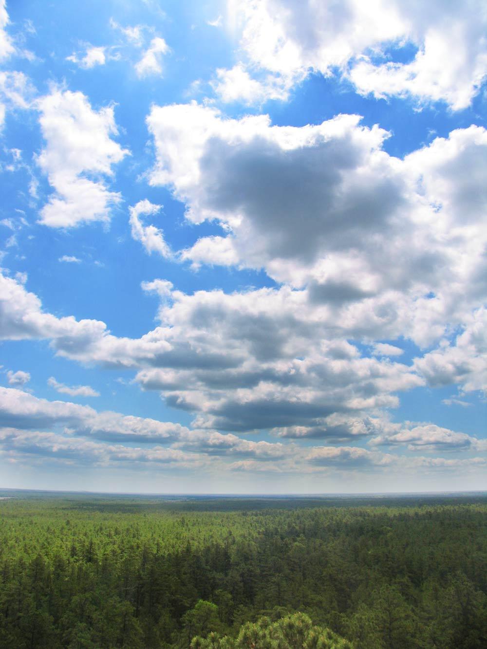 Batona Music to the clouds