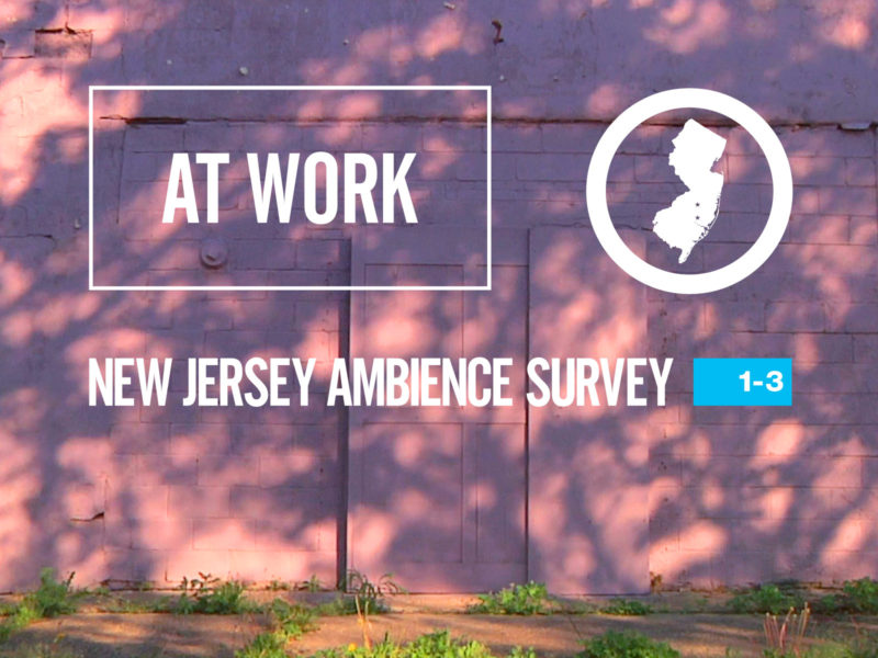 At Work: New Jersey Ambience Survey